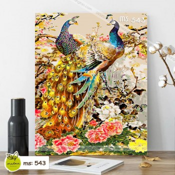 Tranh tô màu đôi chim công vạn phúc tài lộc T543