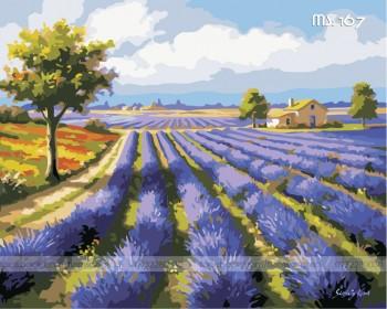 Tranh tô màu Cánh đồng Lavender 167