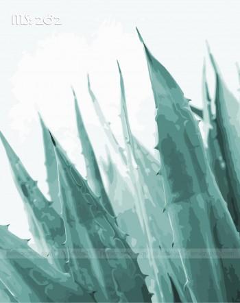 Tranh tô màu cây lưỡi hổ 282
