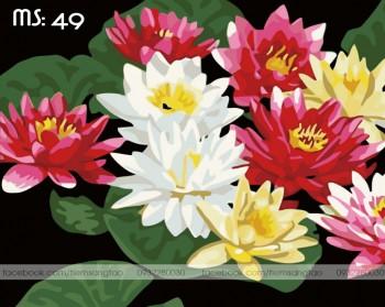 Tranh tô màu Hoa Súng 49